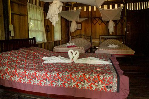 Dorm-Room-Khao-Sok