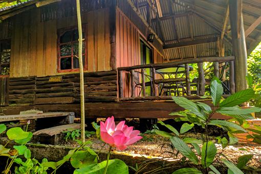 Family-Bungalow-Khao-Sok-National-Park